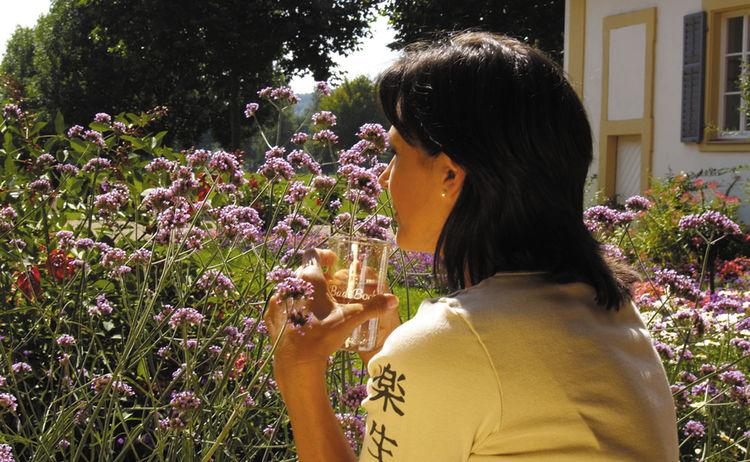 Kurgarten Blumen 1