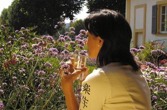 Kurgarten Blumen