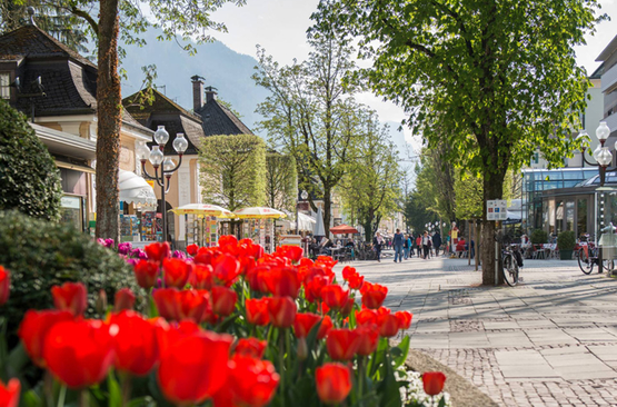 Alpenstadt Shopping Bad Reichenhall 1