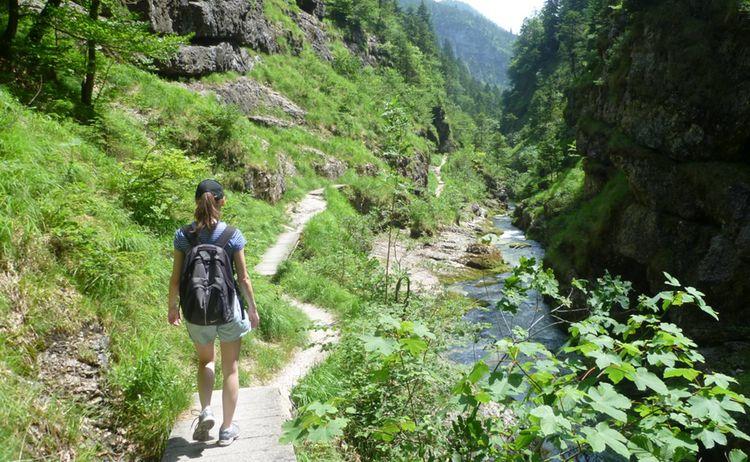 Atemwandern In Der Weissbachschlucht