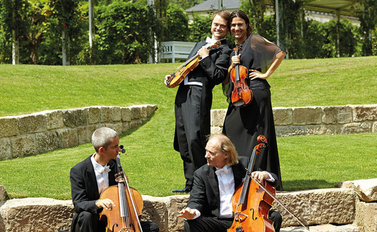 Bayer Kammerorchester Bad Brueckenau