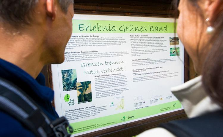 Gruenes Band 5